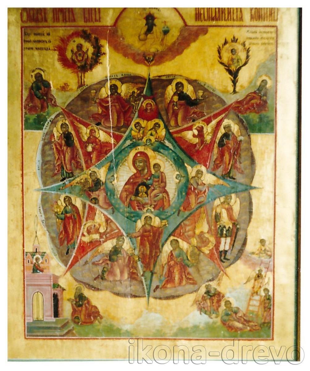 Богородица Неопалимая Купина, после реставрации
